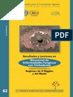 trichoderma Chile.pdf