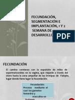 3fecundacinsegmentacineimplantacin1y2semanadedesarrollo-160608213300