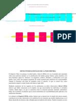 paso 2_trabajo_colaborativo_lorena lopez