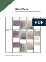 andersen teoh - classification scheme - first take  2