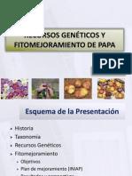 Recursos genéticos de la papa y mejoramiento