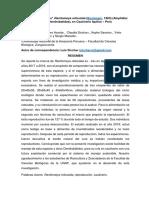 Articulo en Preparacion Sobre Cria de Ranitomeya Reiiculata.