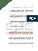 a_importancia_da_lingua