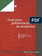 Guia documentacion de proyecto