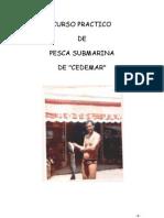 CURSO PRACTICO PESCA SUBMARINA