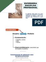 disciplina profesional.pptx
