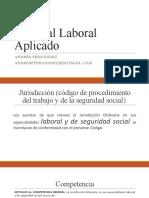 Procesal Laboral Aplicado