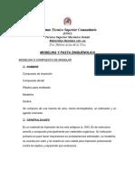 ModelinaPasta Zinquenolica.pdf