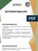 Biotransformación