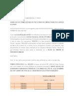 apruebe informe pericial y otros - copia