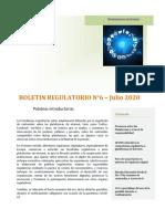 boletin_regulatorio_6_2020