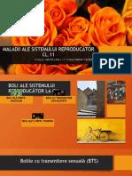 maladii_ale_sistemului_reproducator_cl.pptx