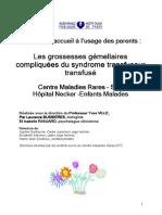 Brochure-STT-20121018 (1)