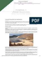 CONCENTRACIÓN DE MINERALES_