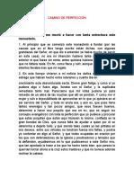 CAMINO DE PERFECCIÓN CAP 1