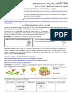 relacion_en_plantas_y_animales_5.pdf