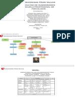 Mapa mental básico.pdf