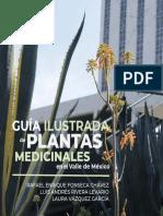 guia-ilustrada-de-plantas-medicinales-valle-de-mexico-inpi.pdf