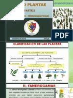 REINO PLANTAE FANEROGAMAS- GYMNOSPERMAS.pdf
