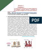 6º Etapa - Morfo módulo1.pdf