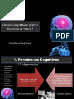 Cómo funciona la mente