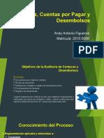 Compras, Cuentas por Pagar y Desembolsos ANDY ANTONIO FIGUEROA