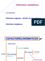 Cofactores enzimaticos y vitaminas