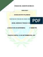 INVESTIGACION_FISIOLOGIA_GRISEL BERENICE_3° SEMESTRE_ENFERMERIA