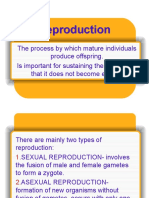 nutrition and reproduction.ppt