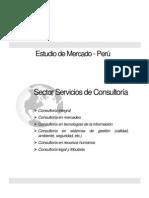 Estudio de servicios de Consultoria en el Perú