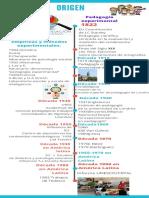 Exposición Investigación educativa.pdf