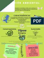 Infografía sobre la educación ambiental