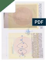 GE Meines Ing.gestempelter Patent Syntetische Gelenken Auf Magnetischer Felden Meines Buch Stand 2013 2014 03