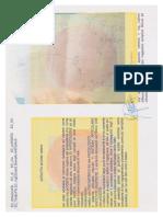 GE Meines Ing.gestempelter Patent Syntetische Gelenken Auf Magnetischer Felden Meines Buch Stand 2013 2014