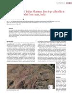 Das 2015_Skimmer_Chambal.pdf