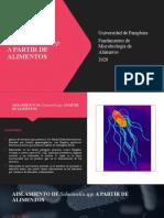 AISLAMIENTO DE SALMONELLA pptx