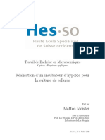 MT_2020_Diplome_Meister-Memoire.pdf