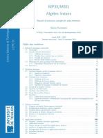 faccanoni.pdf