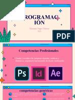 Programacion 01.pptx