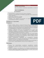 SISTEMA DE GESTIÓN INTEGRAL MINERA - PLAN DE ESTUDIOS