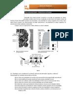 8-BioGeo10-paleomagnetismo-exames