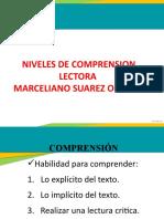 NIVELES DE LECTURA DIAPOSITIVAS (1)