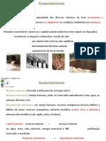513400_aula sustentabilidade geral 2 aula.pptx