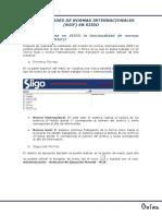 GENERALIDADES  DE NORMAS INTERNACIONALES DE SIIGGO.pdf