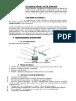 TP_hydrodistillation__lavande_07-08.doc