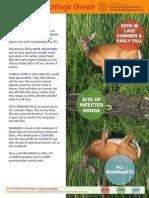 CWHL Fact Sheets-EHD.pdf