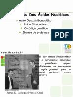 acidosnucleicosNOVO2.ppt