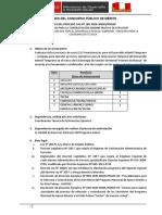 BASES CAS VIRTUALIZADAS v4 CAS N°189-2020.pdf