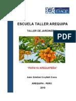 Informe Papaya Arequipeña