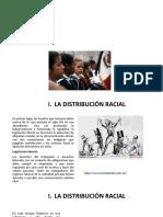 LA DISTRIBUCIÓN RACIAL Y LA EDUCACIÓN HISTORIA ECONOMICA